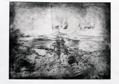 Landscape in Black and White ,2016